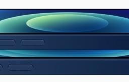 iPhone 12 en iPhone 12 mini