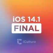 iOS 14.1 Final.