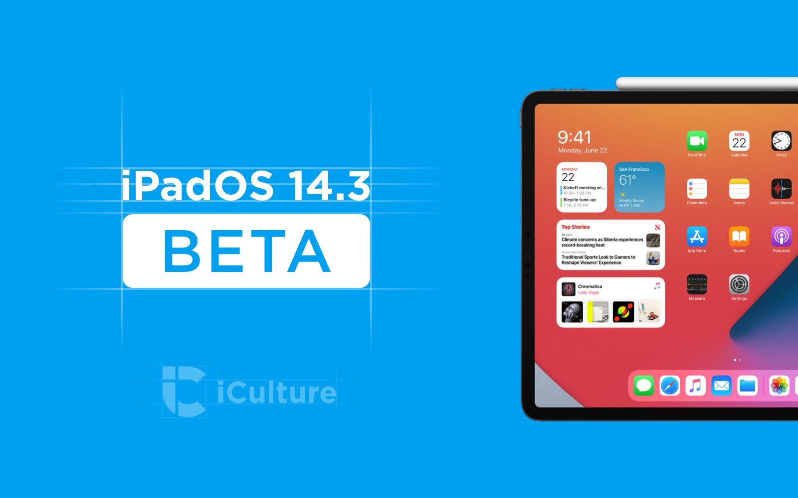 iPadOS 14.3 beta.