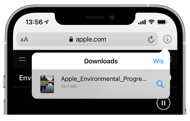 Bekijk downloads in Safari op iPhone
