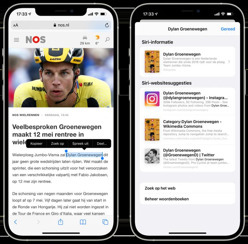Woorden opzoeken in iOS