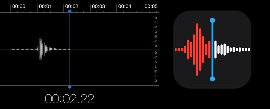 Apple voicememo-icoon
