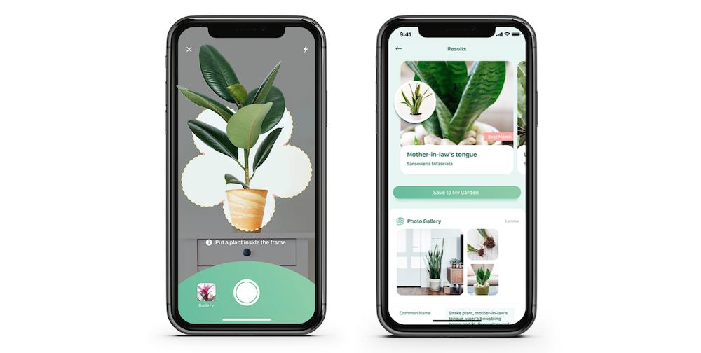 blossom-app-iphone-planten