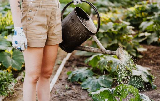 Apps voor tuinieren
