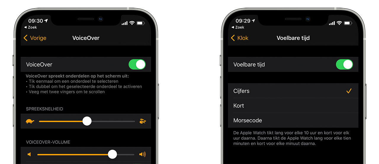 VoiceOver op Apple Watch instellen