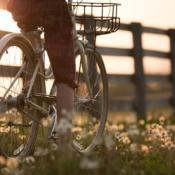 fietsen-platteland-lente