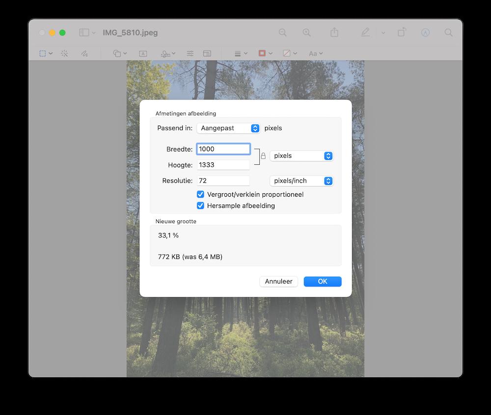 grote-afbeelding-aanpassen-voorbertoning-mac