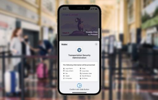 ID details op iPhone (VS)
