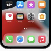 iOS 15 homescreen