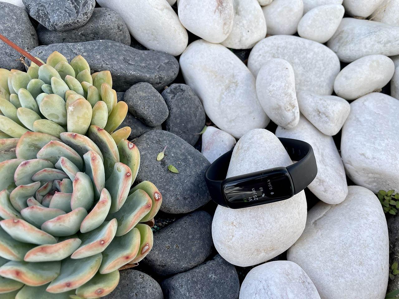 Fitbit Luxe voorkant