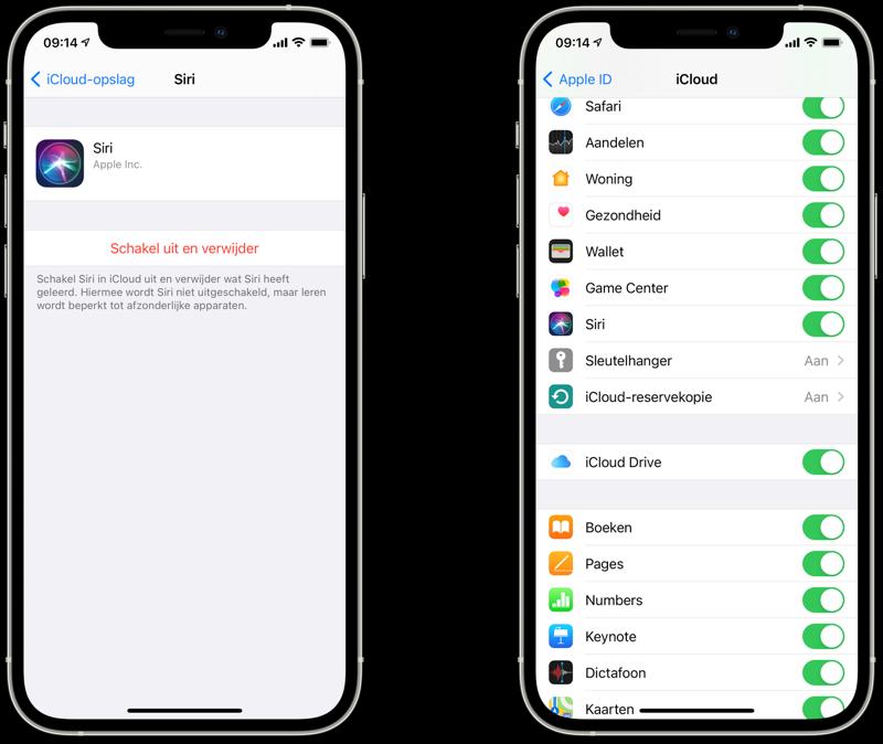 Siri iCloud data wissen en uitschakelen.